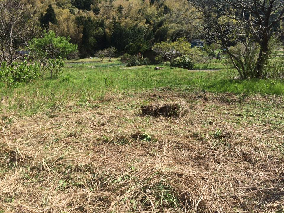 岩美町農作業畑の開墾