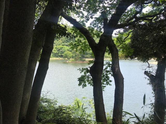 多鯰ヶ池と弁財天(弁天宮)とお種伝説