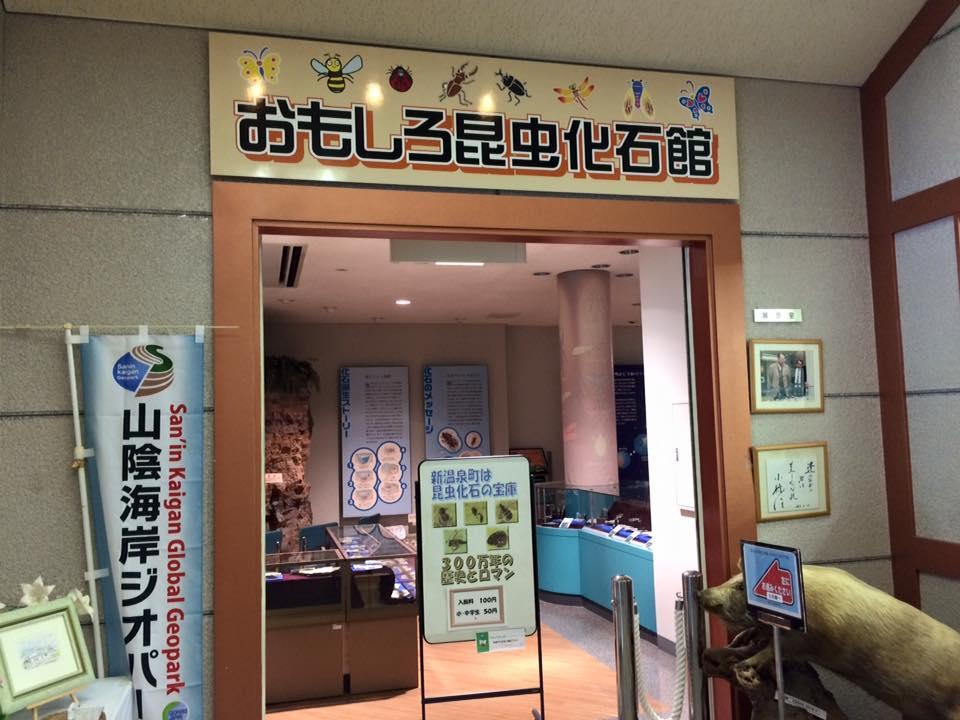 おもしろ昆虫化石館