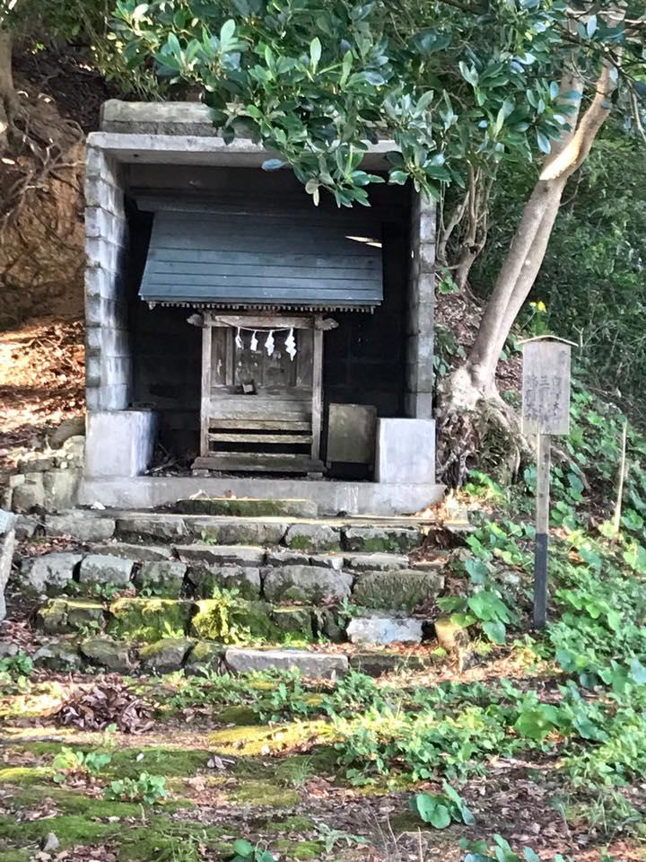 岩美町浦富の荒砂神社の旧社地に有る白鬚神社とツワブキの花
