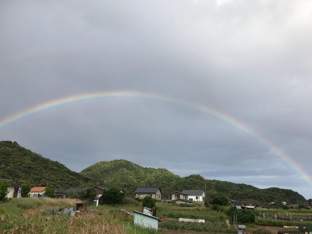自生ササユリが生息する岩美町桐山にかかる虹といわし山小屋について