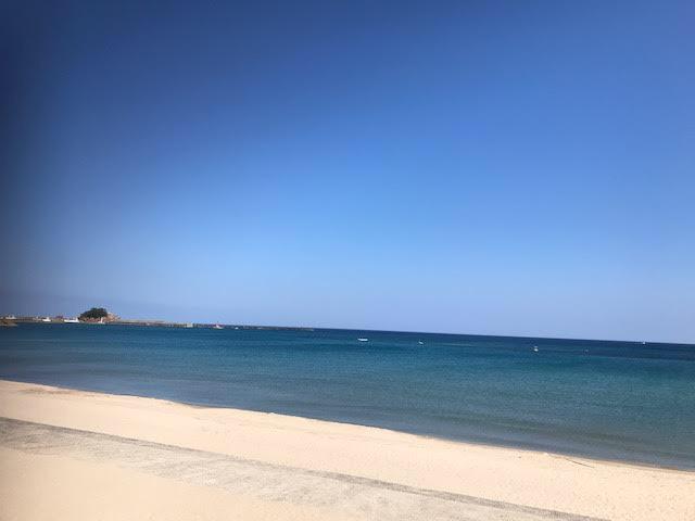 岩美町海岸不法投棄と海ごみクリーンコンテストinとっとり